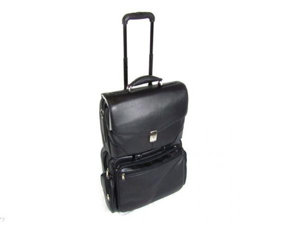 Orna - Trolley Bag- Travel Collection - Originally $525