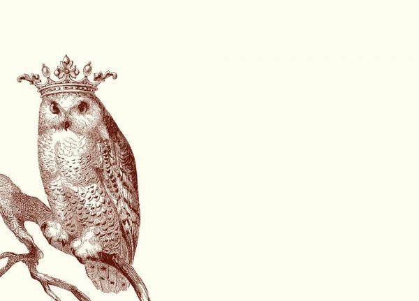 Alexa Pulitzer - Snow Owl A6