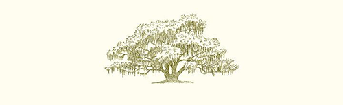 Alexa Pulitzer - Oak Tree A6 Note
